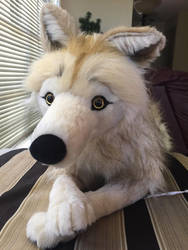 Willow the Arctic Wolf by Sarity by Wolfywillow