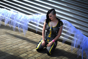 Angel Borderlands 2 - Cosplay by MaryMustang01