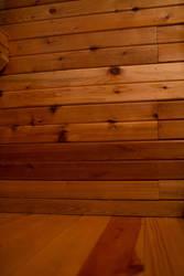 Cedar stock 1 by VioletBreezeStock