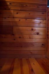 Cedar stock 2 by VioletBreezeStock
