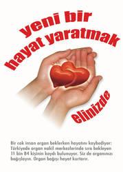 organ bagisi kampanyasi II by oylesine