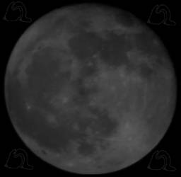 Full Moon - 29/11/12 by BLGraphical