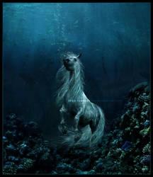 The Sea Horse by duckiethedonkey