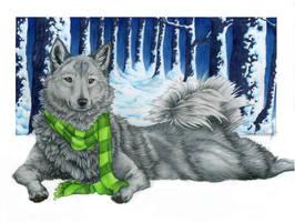 Autumn's Winter by Sessko