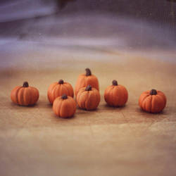 Miniature Fairy Garden Pumpkins by heysugar