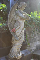 Pula cemetery Stock 20 by Malleni-Stock