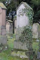 Jewish Cemetery Stock 45 by Malleni-Stock