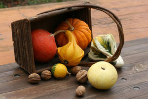 Autumn basket Stock 19 by Malleni-Stock