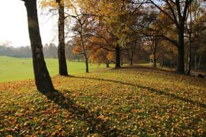 Autumn Stock 02 by Malleni-Stock