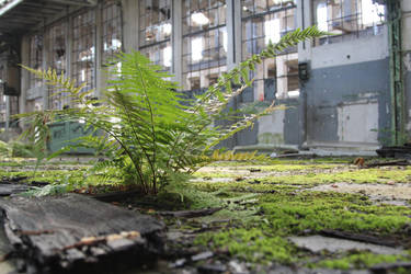 Industrial Decay Stock 79 by Malleni-Stock
