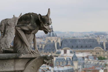 Notre Dame Stock 20 (private use) by Malleni-Stock