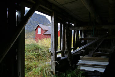 Norway Stock 014 by Malleni-Stock