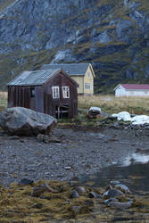 Norway Stock 018 by Malleni-Stock