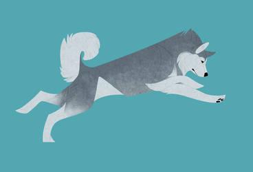 Geometric dogs - Alaskan Malamute by Kelgrid