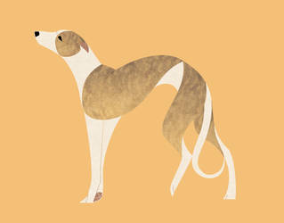 Geometric dogs - Whippet by Kelgrid