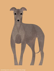 Year of the Dog - Italian Greyhound by Kelgrid