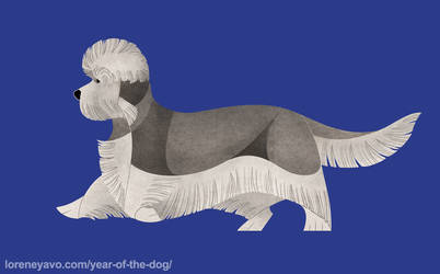 Year of the Dog - Dandie Dinmont Terrier by Kelgrid