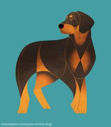 YotD - Polish Hunting Dog ( Gonczy Polski ) by Kelgrid