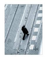 Crossing Lines by Homy