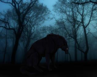 Dark forest by Foelina