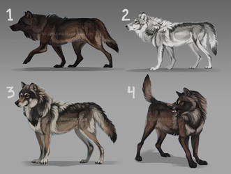 Wow WOLF ADOPTS, auction: CLOSED by Chickenbusiness
