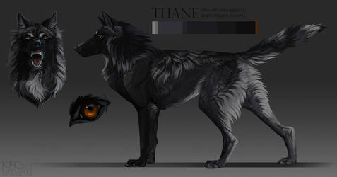 Thane, wolf adopt: SOLD by Chickenbusiness