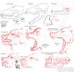 Wolf skulls and snarls reference by Chickenbusiness