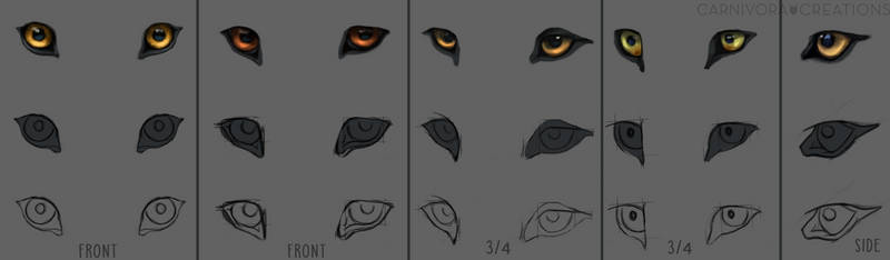 Wolf eye study by Chickenbusiness