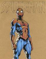 Spider-man by DevilsHaven
