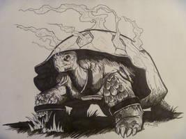 Torkoal by Jnaxizemus