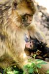 Mother and Child by AkumaJusan