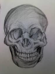 Skull Front View by KimariLz