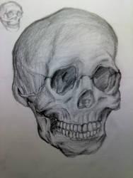 Skull View 2 by KimariLz