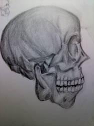 Skull Side View by KimariLz