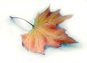 Autumn by eternalR