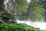 Near the river by Lunnika-Horo