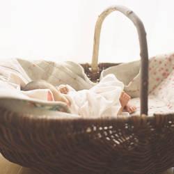 Baby 3 by tkhr