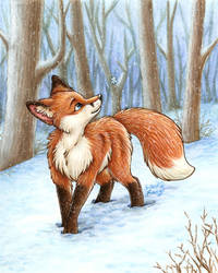 Fox in the Snow by SilentRavyn