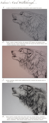 Wolf Card Walkthrough by Sidonie