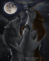 Moonlight by Sidonie