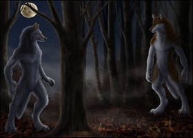 Forest Standoff by Sidonie