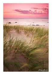 Dune Grass Blowing In The Wind by Julian-Bunker