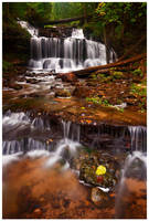 River of Life by Julian-Bunker