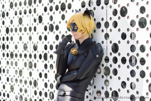 Chat Noir by CarambolaG