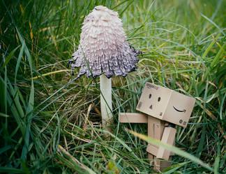 Mushroom by Hemaka86