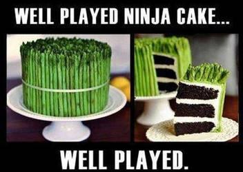 Ninja cake. by Kellarn