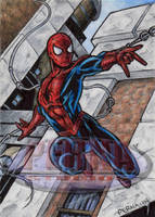 Spider-Man - Sketch Card by tonyperna
