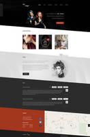 Hair salon Hair in danger Flat Web design by SycylianBeef