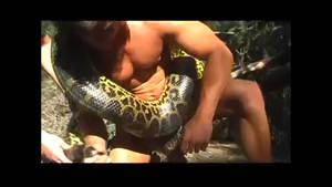 Tarzan vs anaconda by largepython
