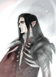 Eredin by Elisabethianna